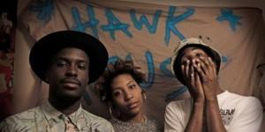 Hawk-House-Bio-Pic-630x442-1-e1379881429399